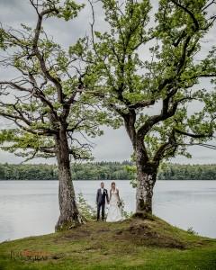 Fotograf Peter Ringström- MG 8009
